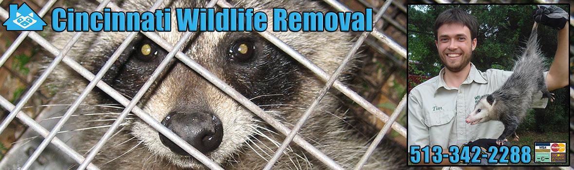 Cincinnati Wildlife Co...