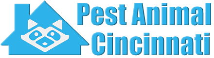 Cincinnati Wildlife and Animal Removal